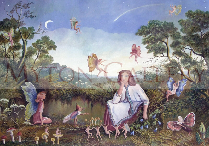 I Don't Believe In Fairies picture by artist Bruce Kendall