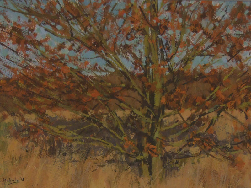 Oak tree in winter sun original painting at Myton Gallery Hull