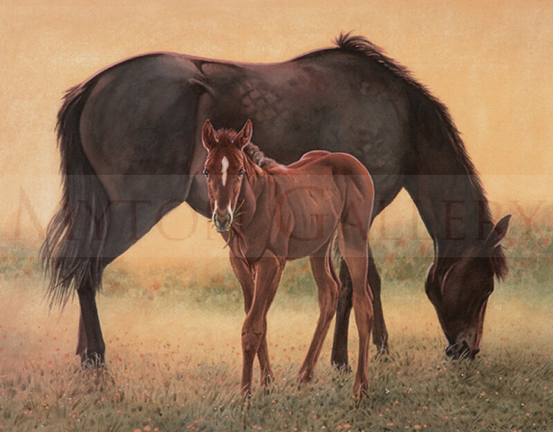 Mare and Foal at Dawn picture by equine artist Ron Spoors